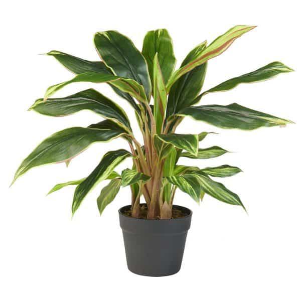 Kunstplant Cordyline 65 cm