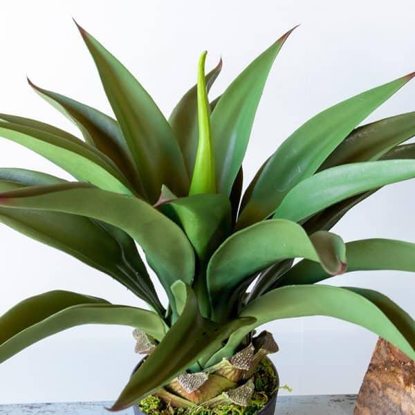 Kunstplant Agave 50 cm