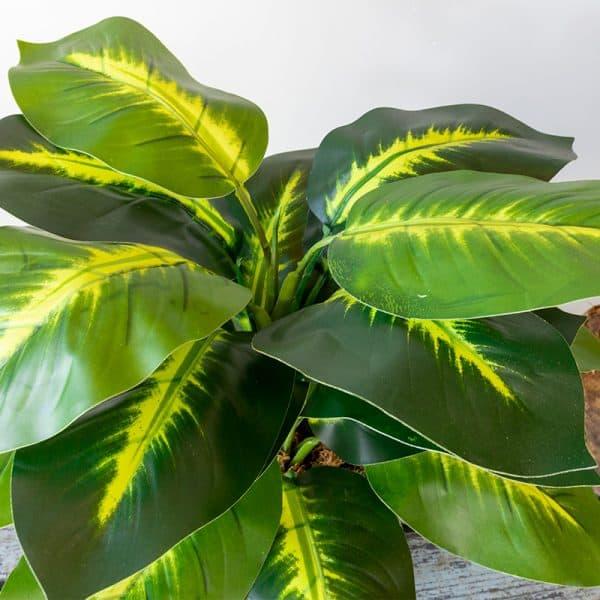 Kunstplant Dieffenbachia 40 cm blad