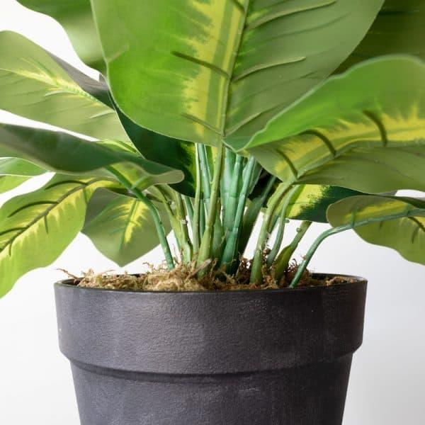 Kunstplant Dieffenbachia 40 cm stam