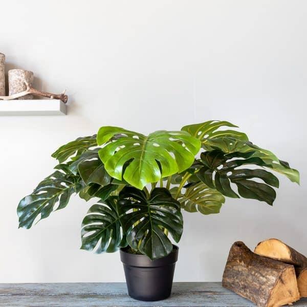 Kunstplant Monstera 60 cmKunstplant Monstera 60 cm