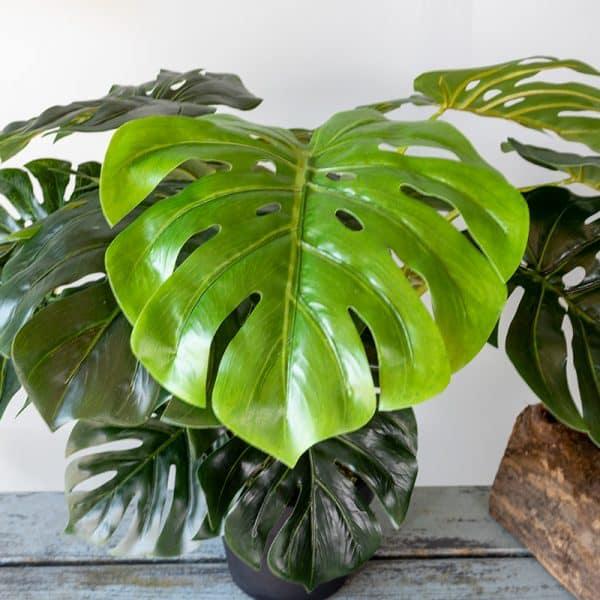Kunstplant Monstera 60 cm blad