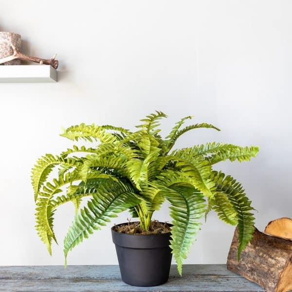 Kunstplant Nephrolepis krulvaren 45 cm