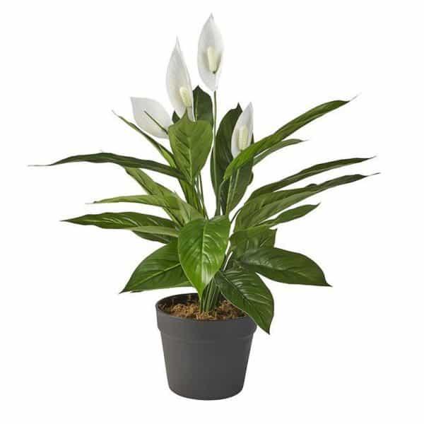 Kunstplant Spatiphyllum Lepelplant 60 cm