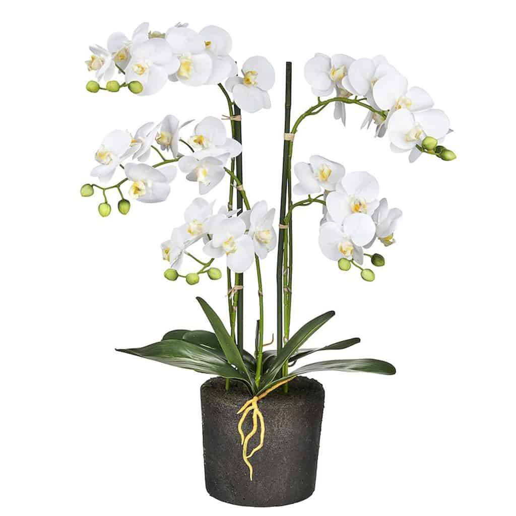 Orchidee Kunstplant 5 tak wit