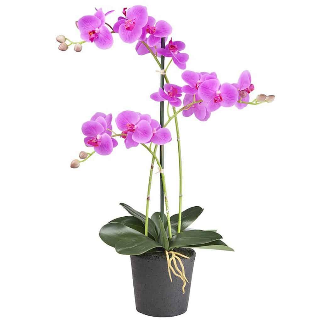 Kunstplant Orchidee 3 tak roze