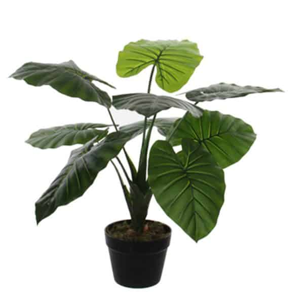 Kunstplant Philodendron 60 cm