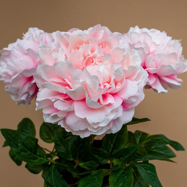 3 pioenrozen open kunstbloemen licht pink