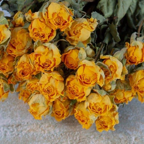 Gedroogde roosjes geel 3