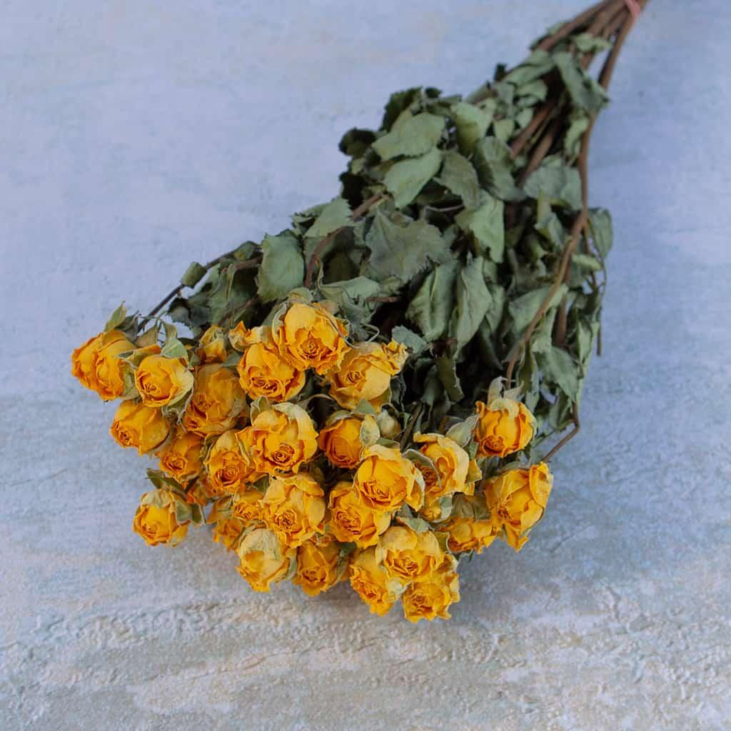Gedroogde roosjes geel