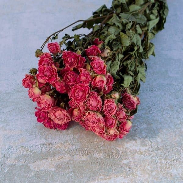 Gedroogde roosjes roze