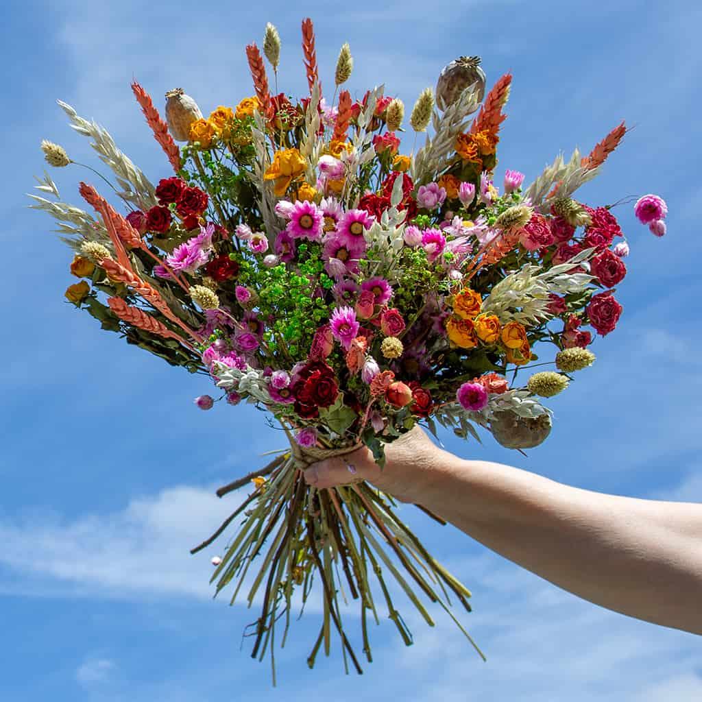 Losse droogbloemen kopen