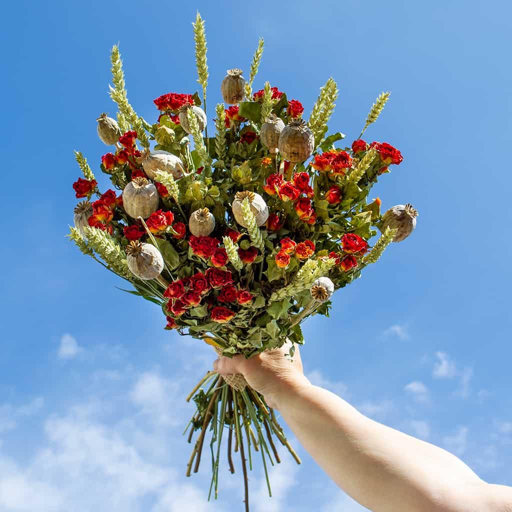 Getrocknete Blumen