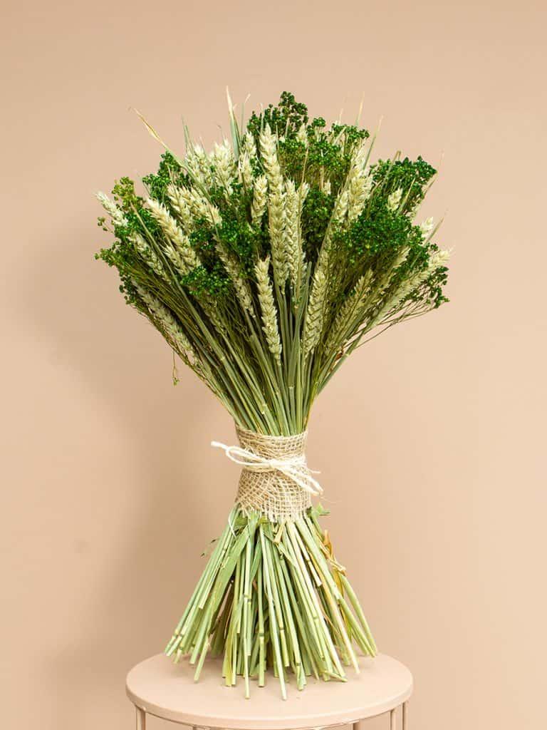 Droogbloem schoofje tarwe broom