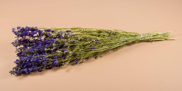 Droogbloemen delphinium risserspoor blauw