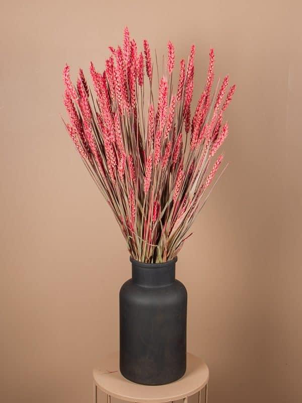 Droogbloemen tarwe vaas roze