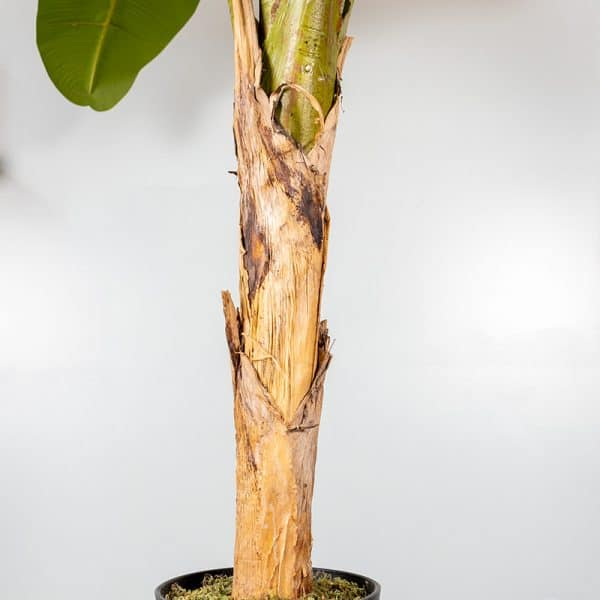 Kunstplant Bananenplant 135 cm stam