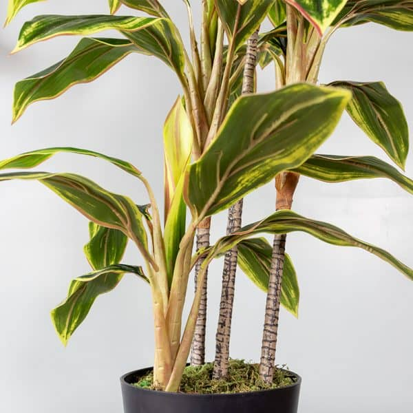 Kunstplant Cordylinefruticosa 100 cm stam
