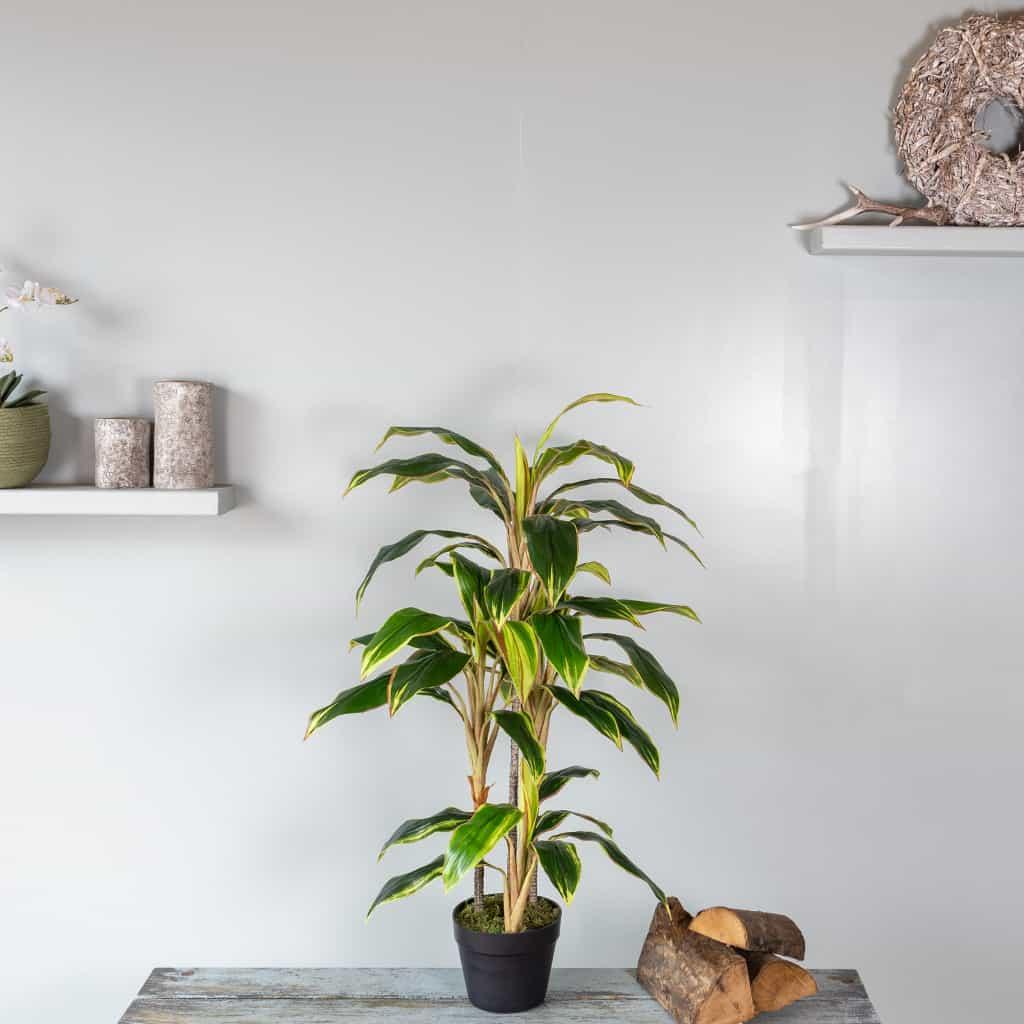 Kunstplant Cordylinefruticosa 100 cm