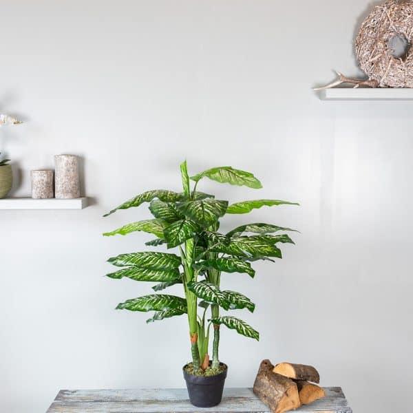 Kunstplant Dieffenbachia 100 cm