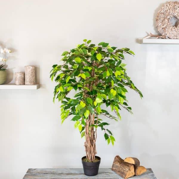 Kunstplant Ficus groen 120 2
