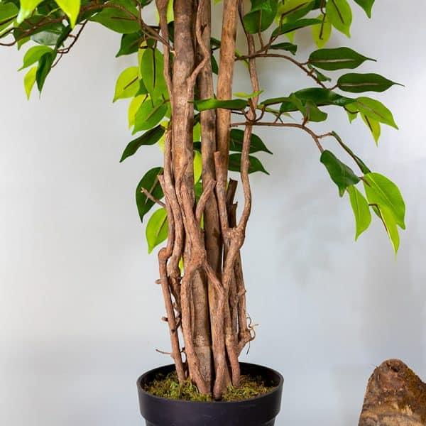 Kunstplant Ficus groen 120 stam
