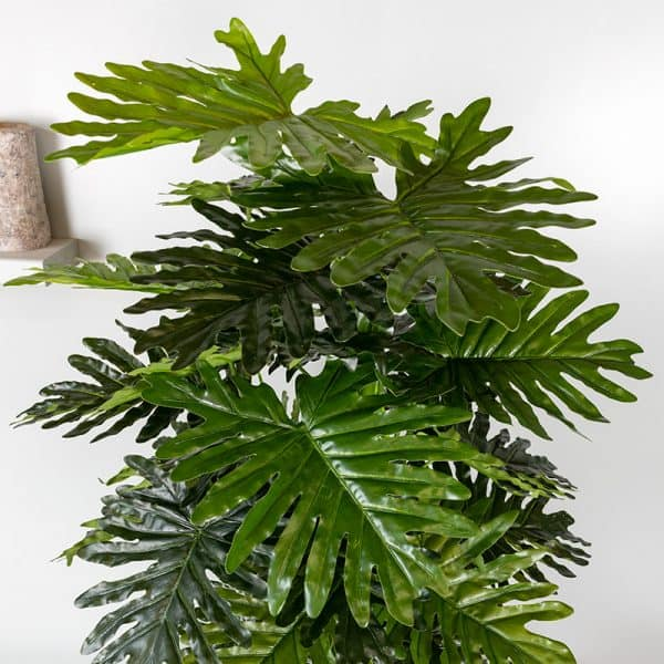Kunstplant Philodendron Xanadu 120 cm blad