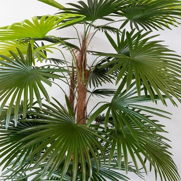 Kunstplant Rhapis humilis 110 cm blad