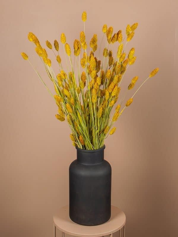 Vaas phalaris geel
