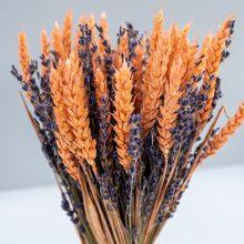 Droogbloem schoofje lavendel tarwe roze
