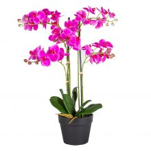 Kunstplant Orchidee 5 tak roze